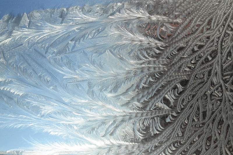 Frost flowers. On a window royalty free stock image