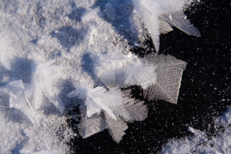 Frost flowers on frozen lake. Frost flowers on frozen freshwater lake; snow formations on ice. A meadow with tiny, beautiful frozen flowers everywhere. Winter stock image
