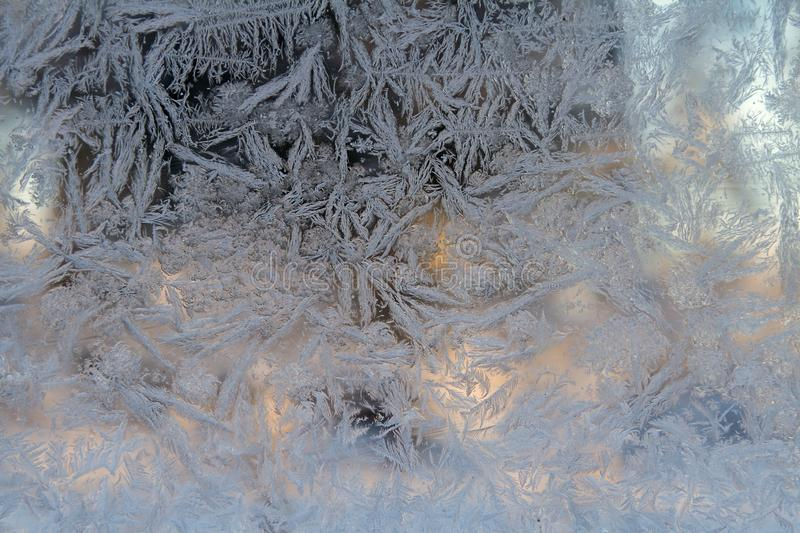 Frost flowers in a window. Frost flowers formed in a window glass in the winter stock photography