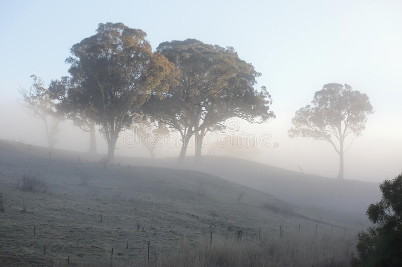 Frost and Fog. A crisp winters morning and a thick blanket of fog mutes the scene while fog frost crystals across the rural landscape crunch underfoot stock photos