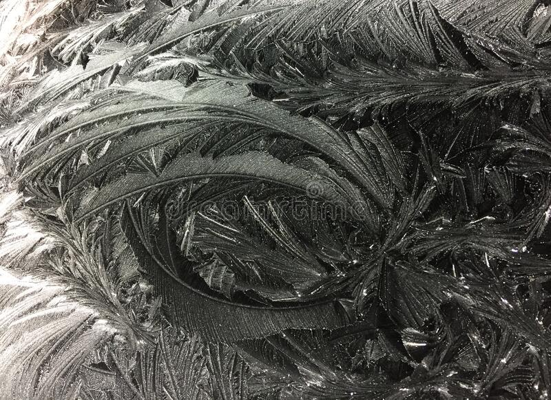 Frost formation royalty free stock images