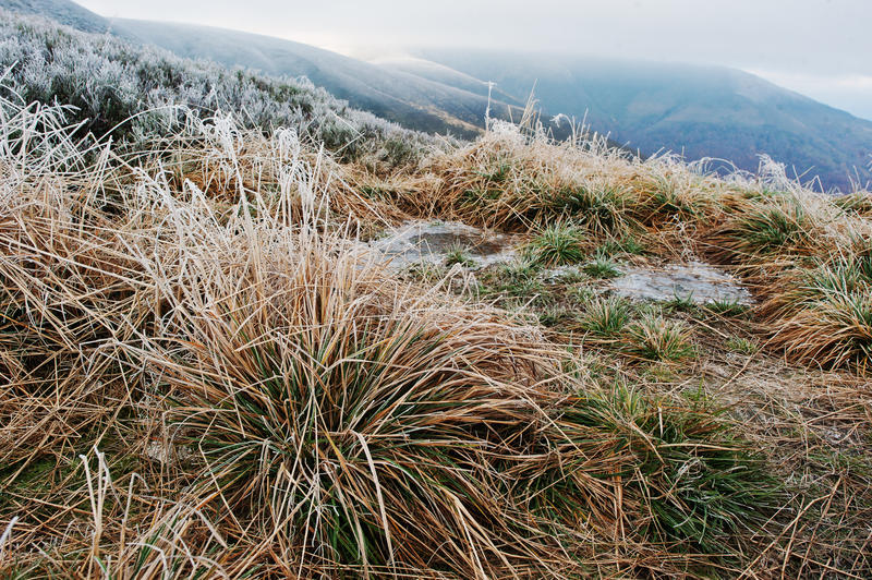 Frost grass background two frozen puddle at mountains. First snow on landscapes stock photography