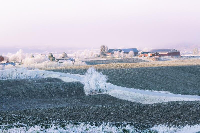 Frost lizenzfreies stockbild