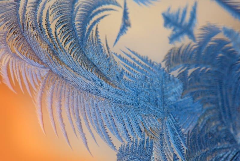 Frost mönstrar på fönstret arkivfoton