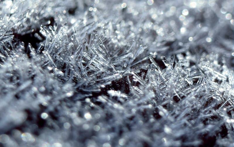 Frost-Makroabschluß oben stockfoto
