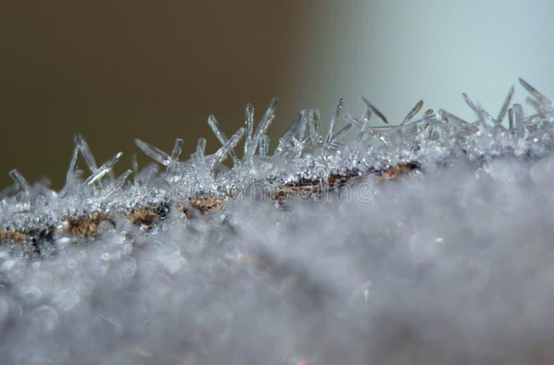 Frost-Makroabschluß oben lizenzfreies stockbild
