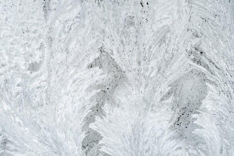 Frost och modell arkivbild