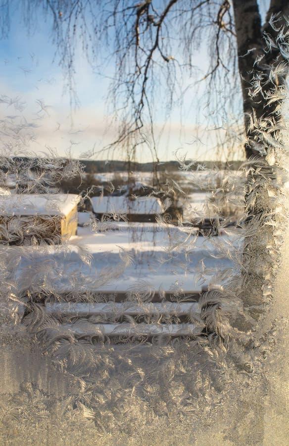 Frost på fönstret royaltyfri fotografi