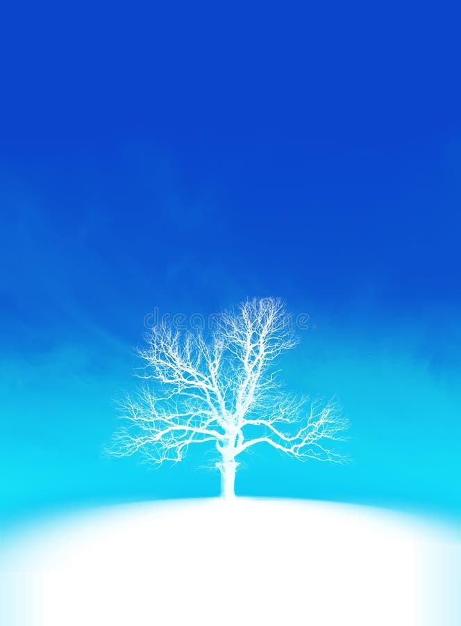 Frost Tree Royalty Free Stock Photos