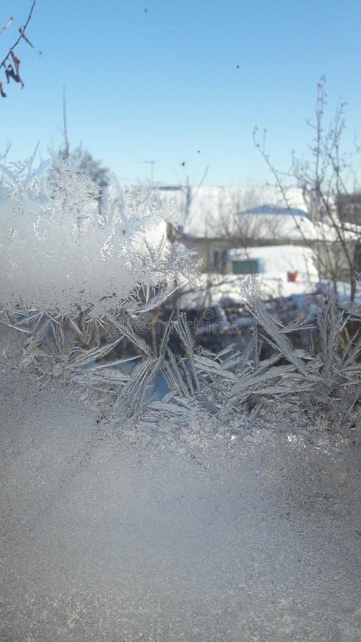 Frost und guter Tag lizenzfreies stockfoto
