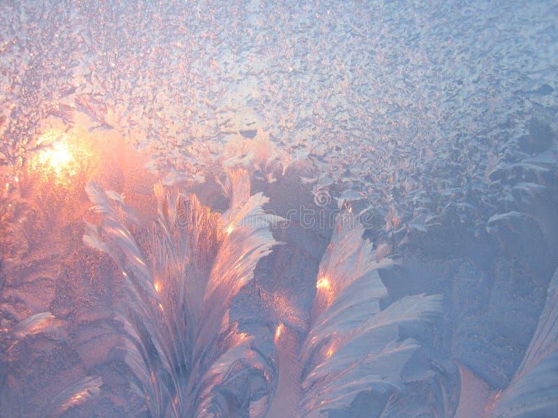 Frost und Sonne stockbilder