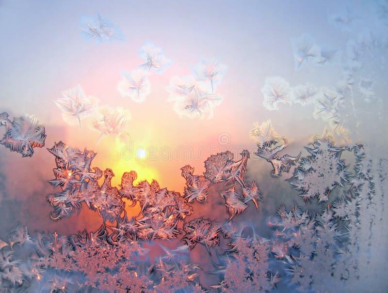 Frost und Sonne stockfotografie