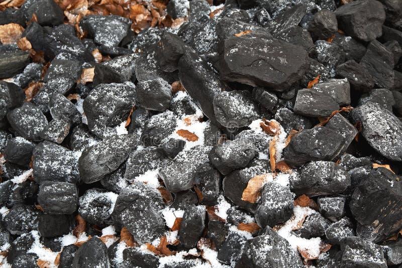 Frost und tote Blätter auf Kohle lizenzfreie stockfotografie