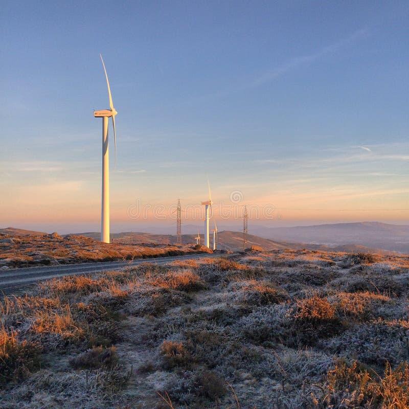 Frost-windfarm lizenzfreie stockbilder
