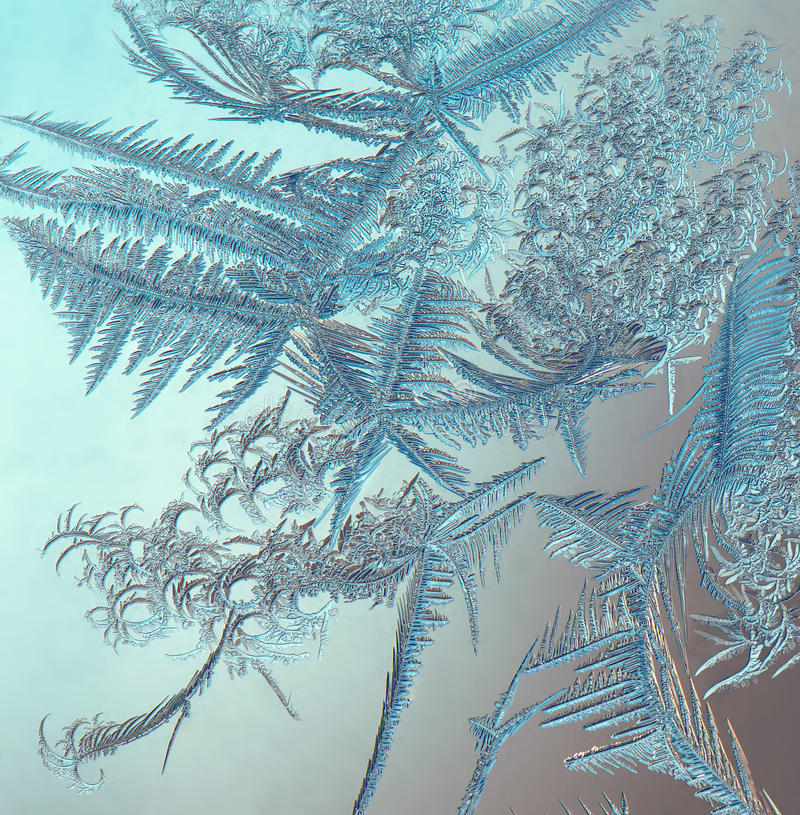 Frost on the window royalty free stock images