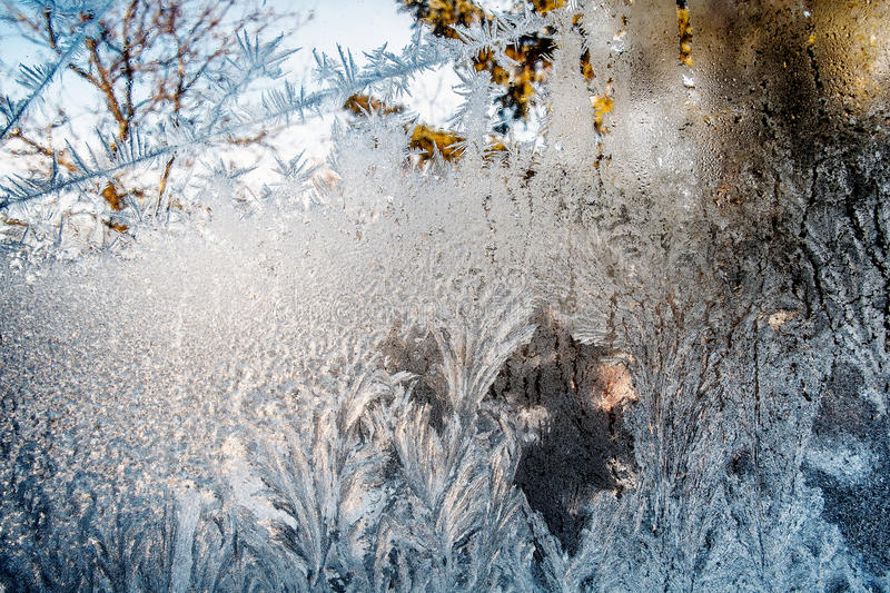 Frost. On a windows on a cold sunny day stock photography