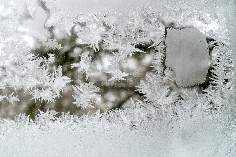 Frost. On a windows that looks like a leaf on a cold day royalty free stock photography