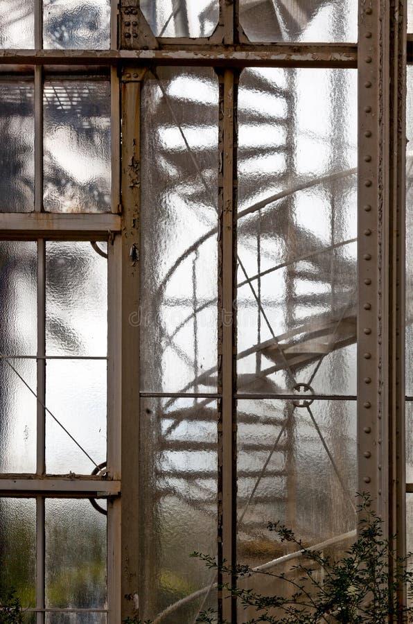 frostat fönster arkivbilder