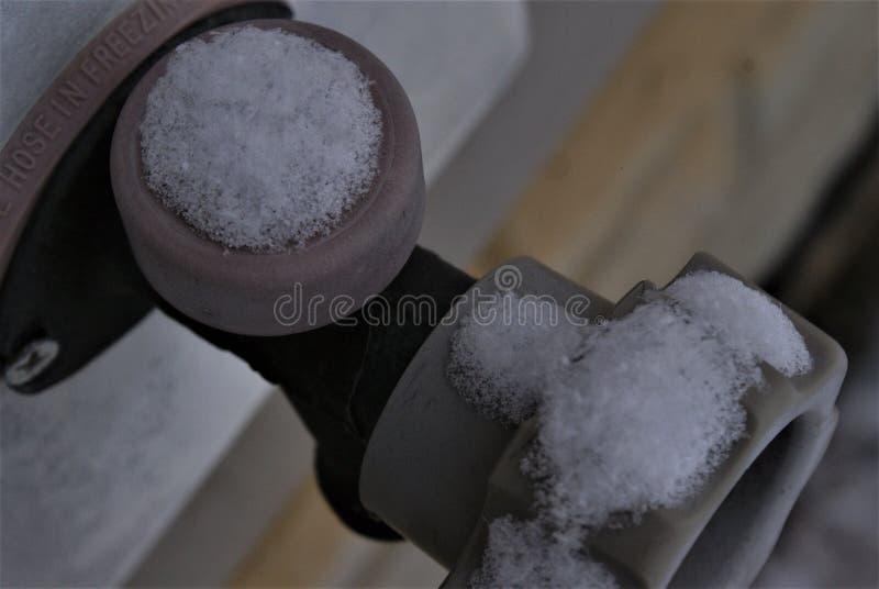 frostbeule stockfotografie