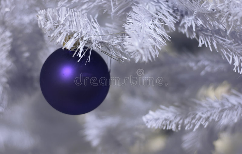 Frosted christmas royalty free stock images