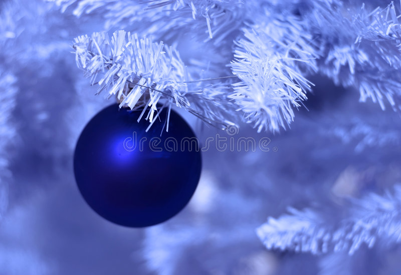 Frosted christmas royalty free stock photography
