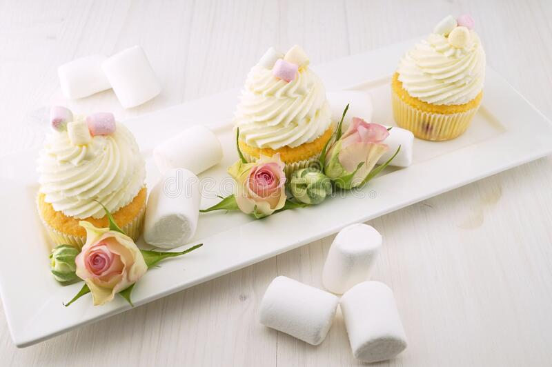 Frosted marshmallow cupcakes stock photo