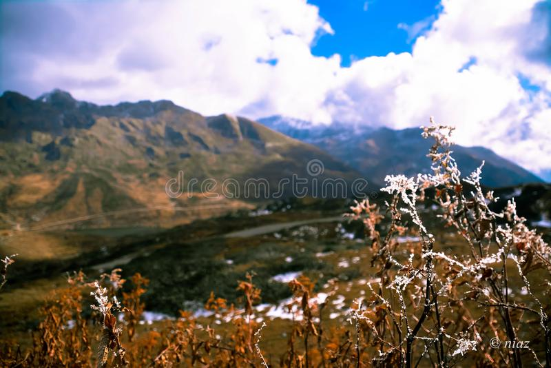 Frosted Nathang valley east sikkim northeast. Nathang valley east sikkim northeast featuring the magnificent mountains that surround it. The view is credible in stock image