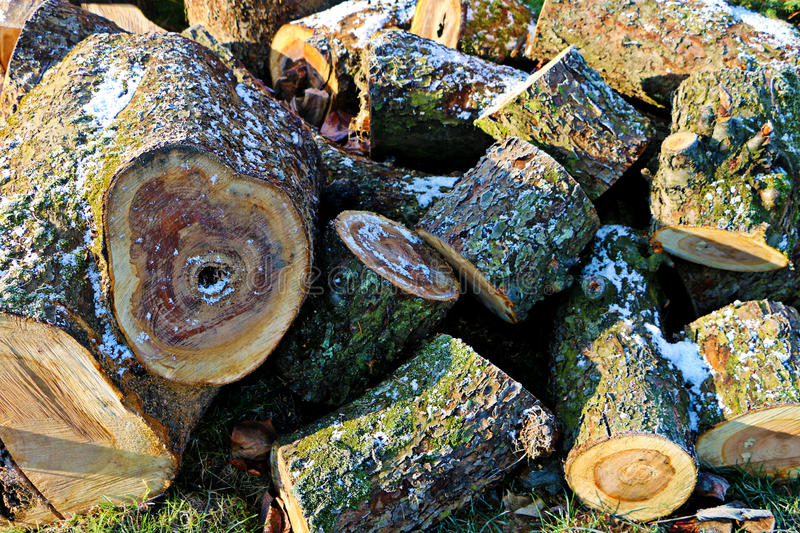 Frosted pieces of wood royalty free stock image
