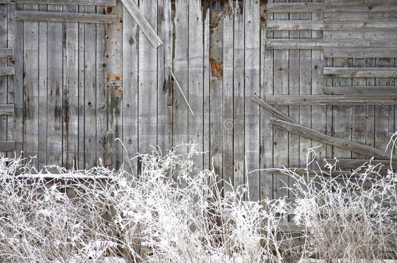 Frosted stara drewniana ściana fotografia stock