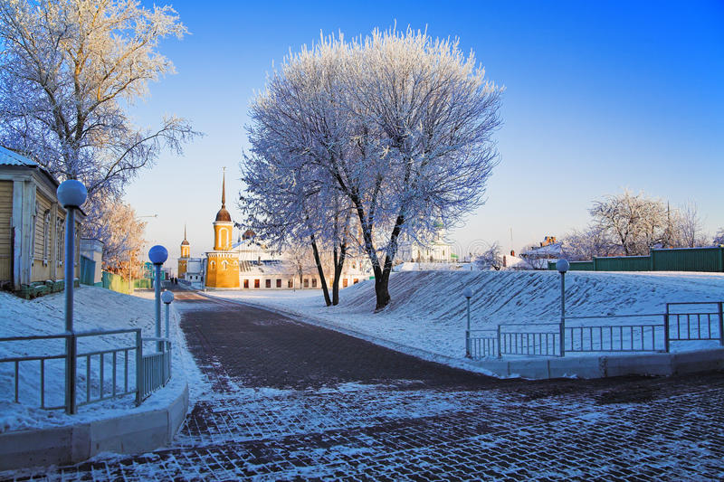 Frosted Tree In Kolomna Kremlin Stock Images