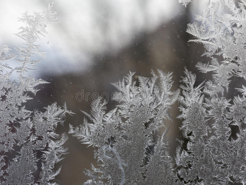 Frosted windows royalty free stock photo
