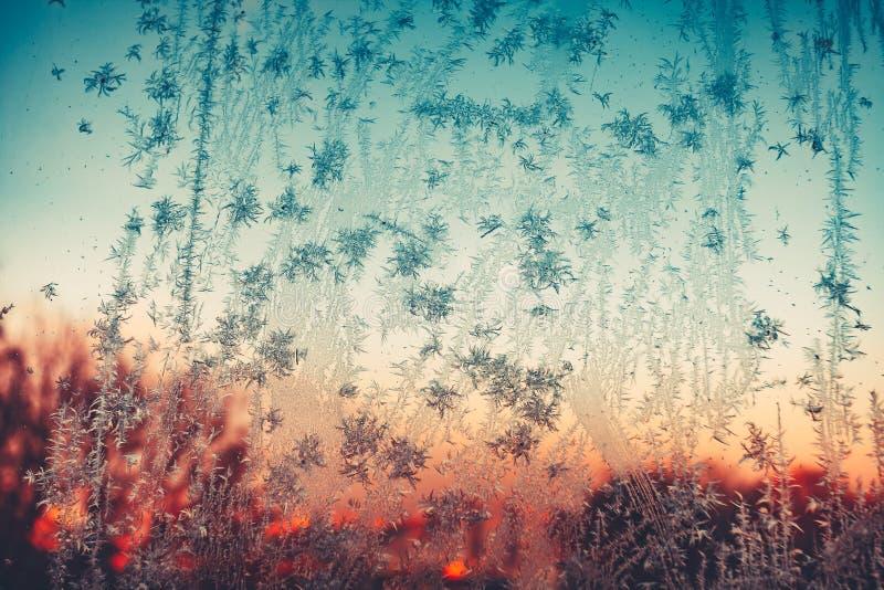 Frostig modell på exponeringsglas på solnedgången eller soluppgång royaltyfri bild