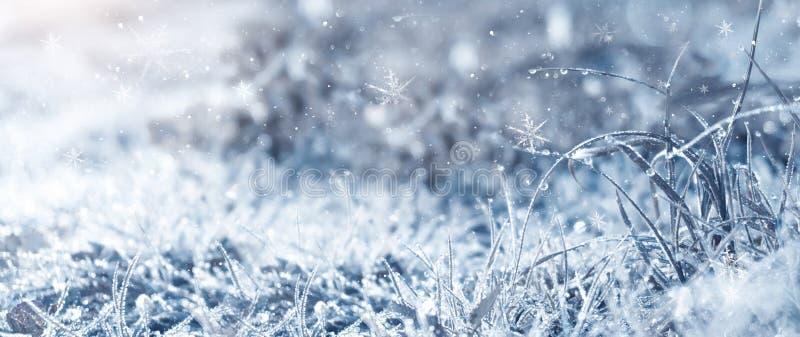 frostig morgonvinter Övervintra snöbakgrund, blått färgar, snöflingor, solljus, makro arkivbilder