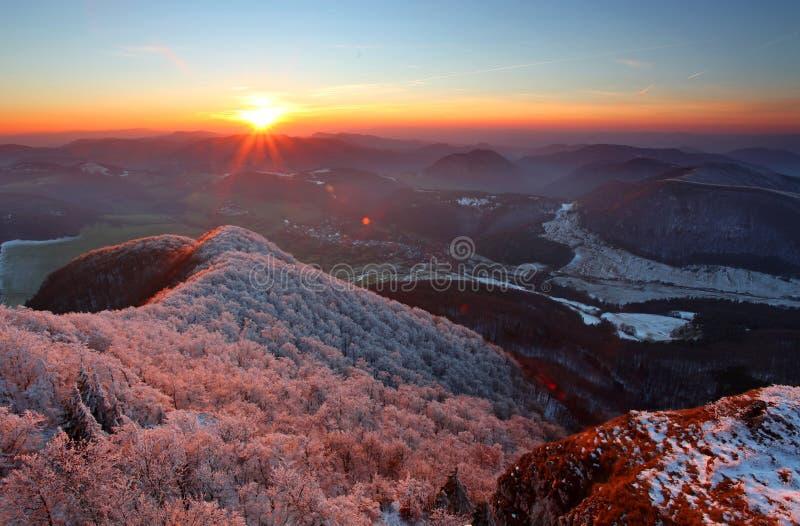 frostig rimfrostliggandesolnedgång royaltyfri bild