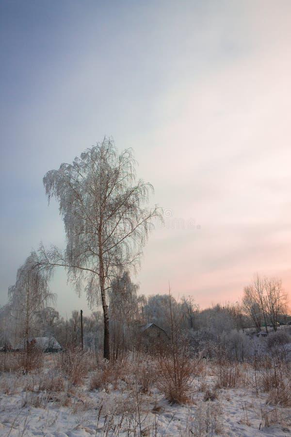 Frostig vinterafton i byn arkivfoton