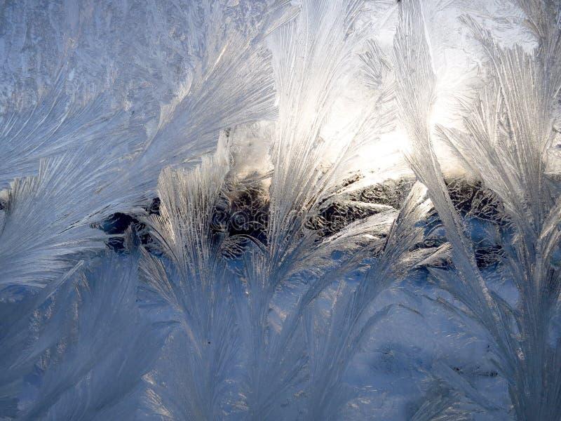 Frostiga vintermodeller på exponeringsglaset bakgrund boards horisontalknotty sörjer textur royaltyfri foto