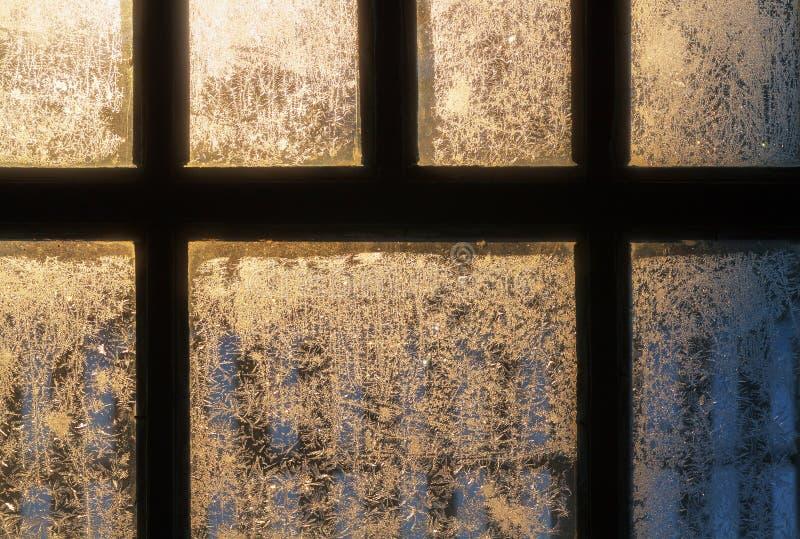 frostigt modellfönster royaltyfria foton