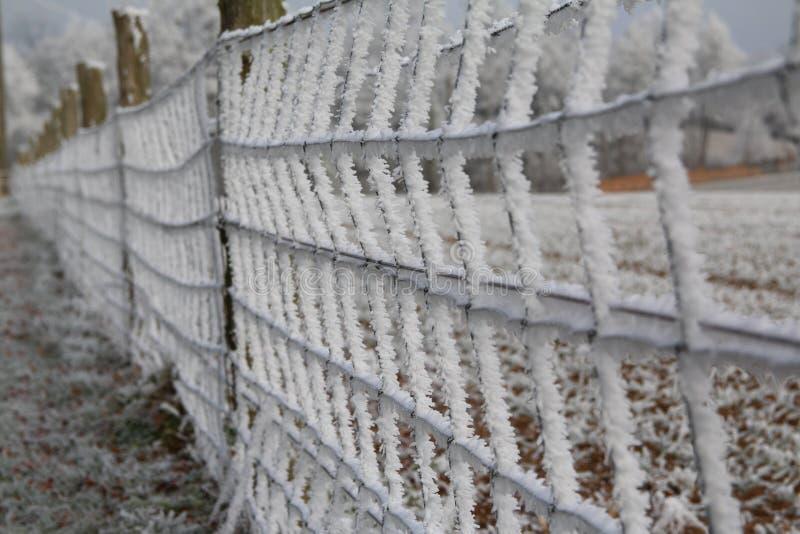 frostigt staket royaltyfri foto