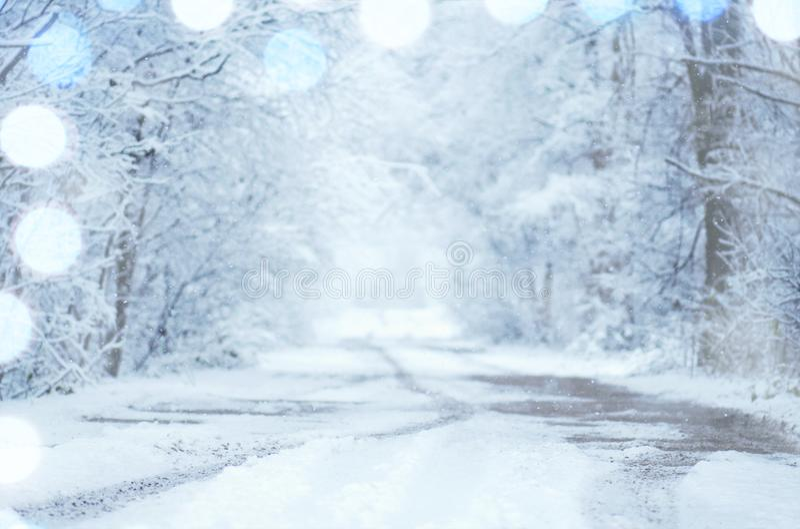 Frostigt vinterlandskap i snöig skog royaltyfri foto