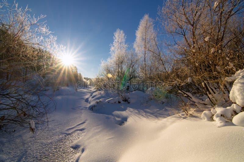 Frostigt vintermorgonlandskap med mist- och skogfloden, Ryssland, Ural arkivbilder