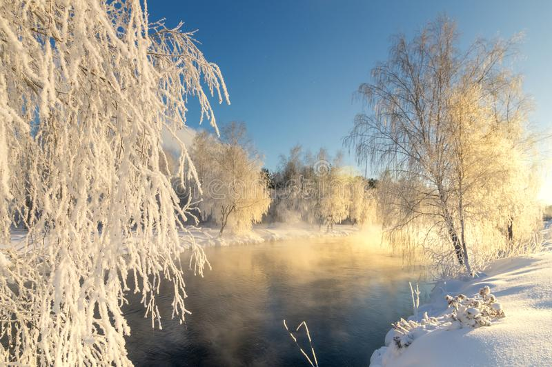 Frostigt vintermorgonlandskap med mist- och skogfloden, Ryssland, Ural royaltyfri bild