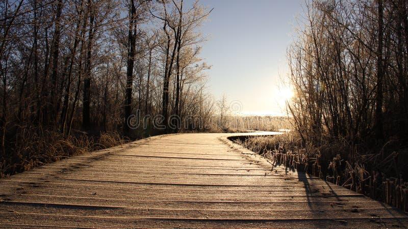 Frostiness im Winter Tau bedeckt auf langer Brücke stockfoto