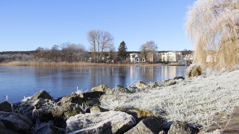 Frostiness im Winter und in der Ansicht von kleinem See lizenzfreie stockfotos
