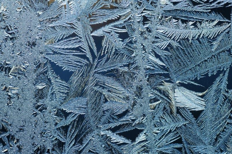 Frostkristaller arkivbilder