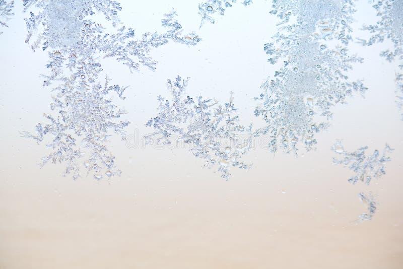 Frostmodell Royaltyfria Foton