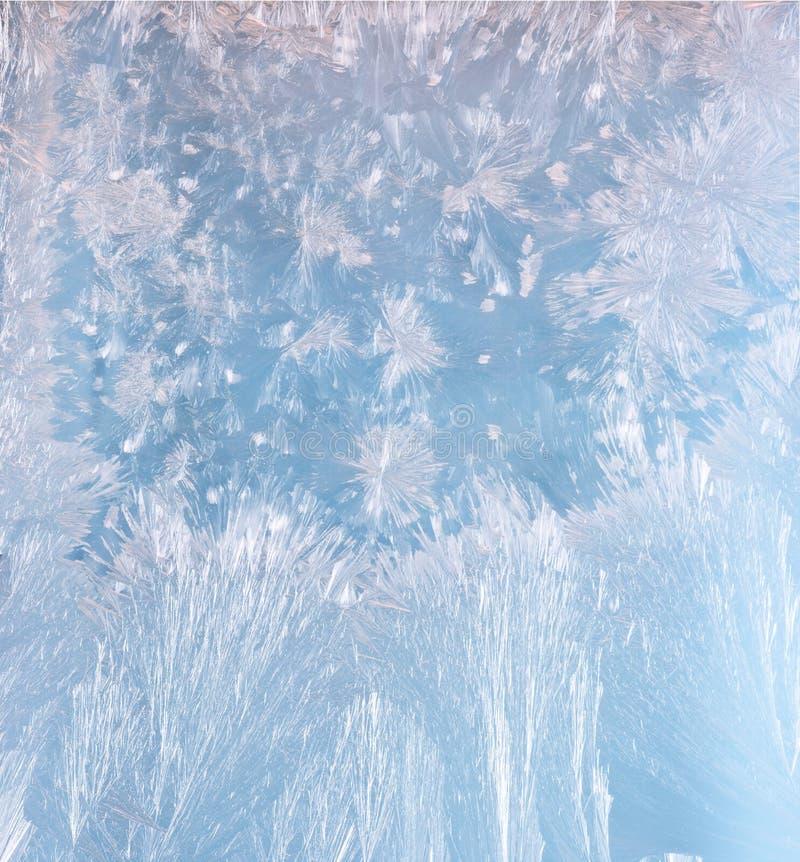 Frostmuster lizenzfreies stockbild