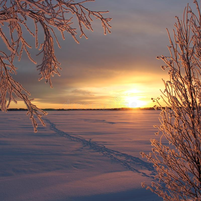 A frosty winterday in Luleå. A frosty and chilly but enchanting beautiful december day in Lule stock images