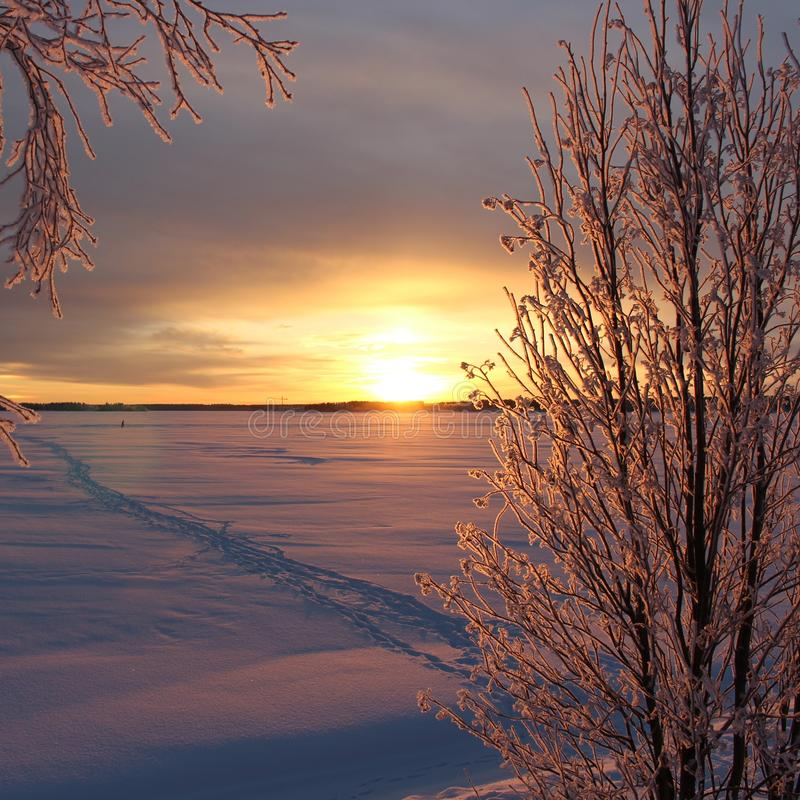 A frosty winterday in Luleå. A frosty and chilly but enchanting beautiful december day in Lule stock image