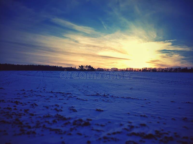 Frosty field royalty free stock image