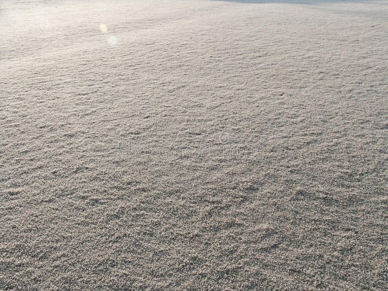 Download Frosty Grass stock photo. Image of golf, farm, natural - 13307460